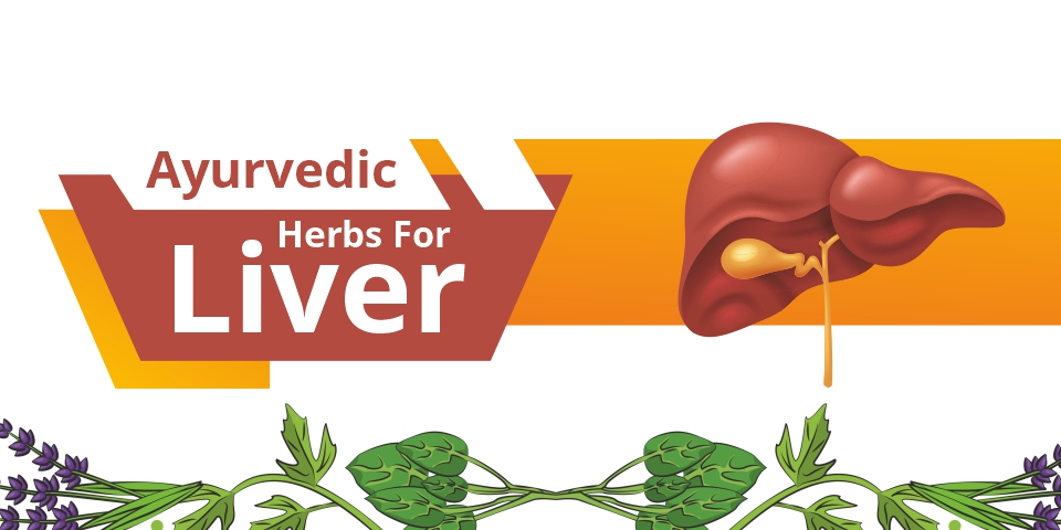Ayurvedic Herbs For Liver